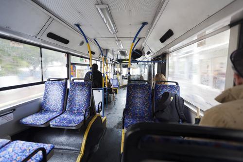 Автобус в Израиле. Фото: elbud shutterstock