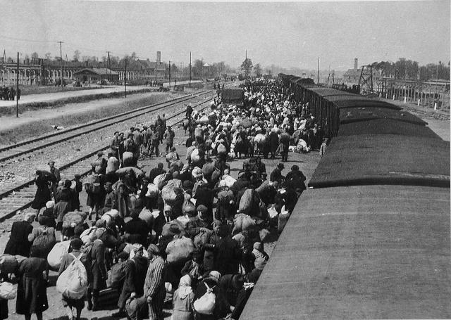 Под лай собак и грохот поездов - relevant